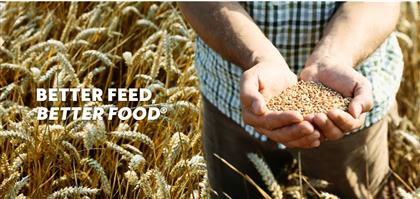 Bentoli Agrinutrition Co., Ltd.'s banner