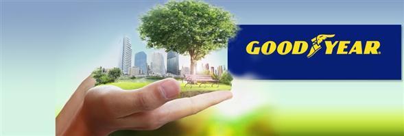 Goodyear (Thailand) Public Company Limited's Bænnexr̒ k̄hxng
