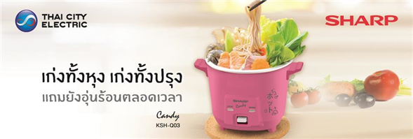 Thaicity Electric.Co, Ltd./บจก.กรุงไทยการไฟฟ้า's banner