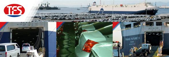 Toyofuji Logistics (Thailand) Co., Ltd./บริษัทโตโยฟูจิ โลจิสติคส์ (ประเทศไทย) จำกัด's banner
