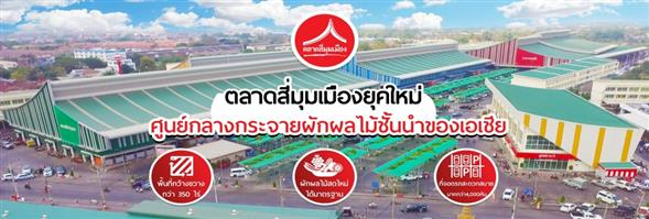 Donmuang Pattana Co., Ltd.'s banner