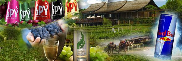 Siam Winery Trading Plus Co., Ltd.'s banner
