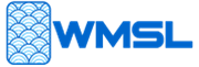 Wealth Management System Limited's logo